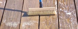 scrub deck